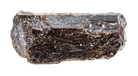 closeup of sample of natural mineral from geological collection - unpolished brown tourmaline (Dravite) crystal isolated on white background