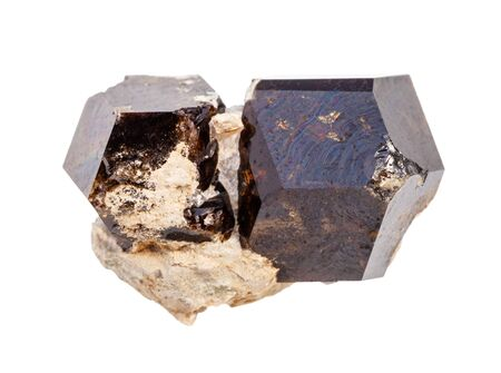 closeup of sample of natural mineral from geological collection - raw Andradite garnet crystals isolated on white background
