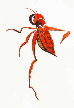A red locust hand-drawn by watercolors on creamy-white paper