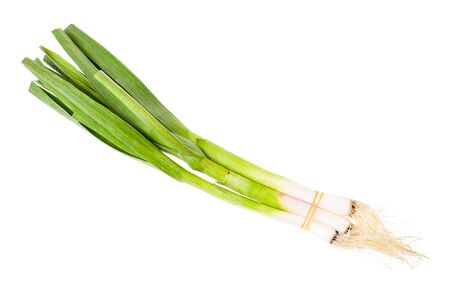 A bunch of green young spring garlic isolated on white