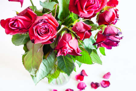 above view of bouquet of wilted red rose flowers in glass vase and fallen petals on pale brown table (focus on the bloom on foreground) Imagens