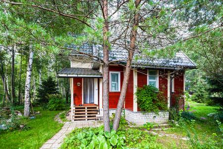 pine tree and wooden summerhouse in Russia in summer Standard-Bild