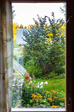 view of overgrown yard with well through window in cottage in summer twilight Stock Photo