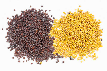 top view of piles of yellow and brown mustard seeds on gray ceramic plate Foto de archivo