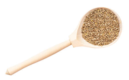 top view of whole-grain barnyard millet seeds in wood spoon isolated on white background