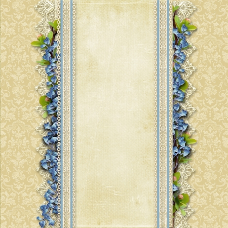 Vintage superb background with lace and blue flowers Vintage superb background with lace and blue flowers  Standard-Bild