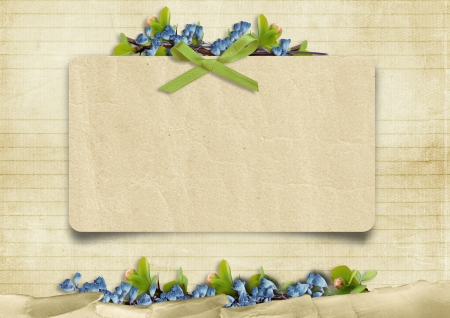 Vintage background with card and blue flowers  photo