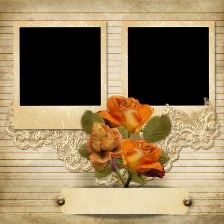 Vintage gorgeous background with a frames and a roses  photo
