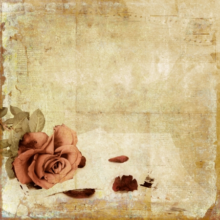 Vintage shabby background with rose  photo