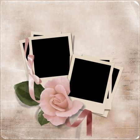 wedding photo frame: Vintage sfondo di eleganza con foto-frame e la rosa