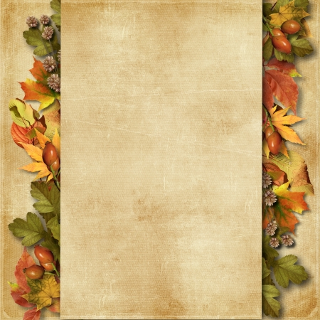 Grunge background with autumn leaves  photo
