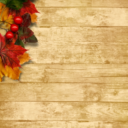 Autumn leaves over wooden background with copy space Stock Photo - 22643537