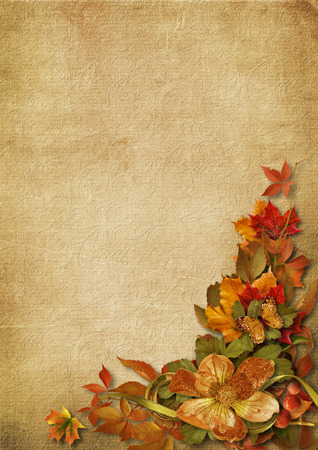 Vintage background with gorgeous autumn decorations Stock Photo