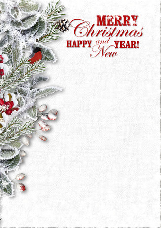 Christmas Greeting Card with snowy branches and bullfinch photo