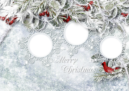 Christmas ice background with frame, holly and with frost photo