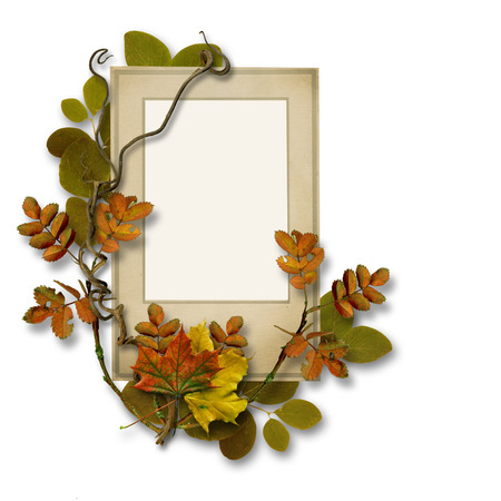 vintage photo frame: Old card with autumn leaves on isolated white background Stock Photo