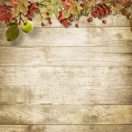 mountain ash: Autumn wooden background with a branch of mountain ash