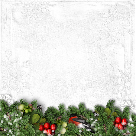 bullfinch: Christmas white background with bullfinch, holly and branches Stock Photo