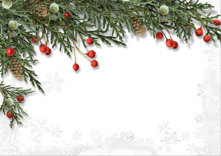 retro christmas tree: Christmas border with holly isolated on white