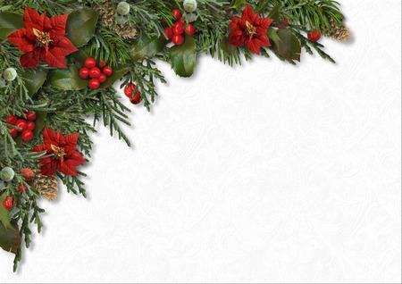 Christmas border of holly, poinsettia, mistletoe, fir tree, cones 스톡 콘텐츠