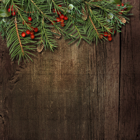 fir tree: Christmas fir tree with holly on grunge wooden Stock Photo