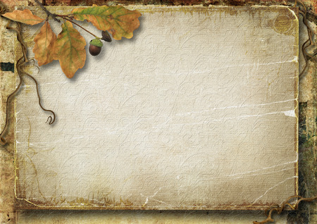 leaves frame: Vintage autumn background with oak leaves and acorns Stock Photo