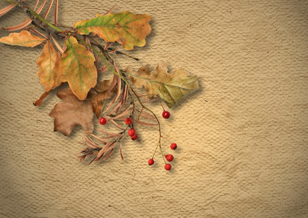 faded: Vintage textured background with faded autumn leaves Stock Photo