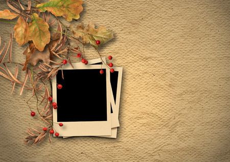 photoalbum: Vintage textured background with faded autumn leaves and photo-frame Stock Photo