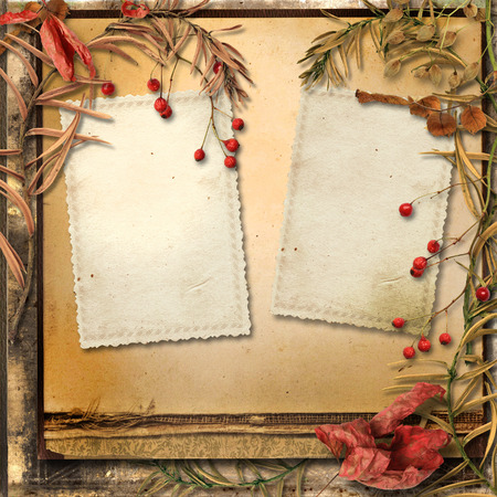 photoalbum: Grunge background with autumn leaves and a frame for photos Stock Photo