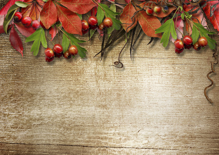 edge: Autumn vintage wooden background with place for your text Stock Photo
