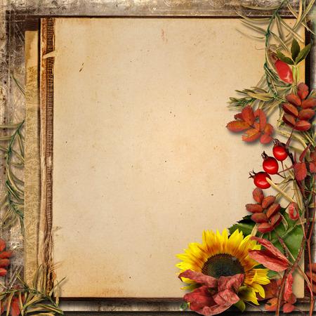 borde de flores: Grunge fondo con hojas de otoño y del serbal Foto de archivo