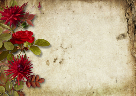 ashberry: Vintage autumnal background with roses and ashberry