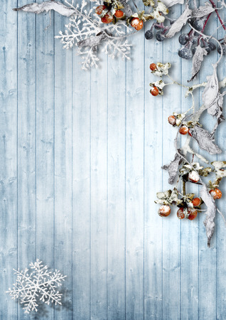 blue border: Vintage winter background with snowy branches and berries Stock Photo
