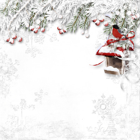 feeders: White winter background with snowy red berries, bullfinch and bird feeders