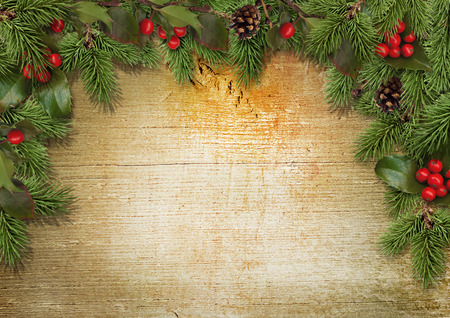 evergreen: Christmas background with border of holly, mistletoe, cones, fir Stock Photo