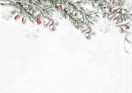 frameworks: Christmas background with snow covered fir branches and red berry Stock Photo