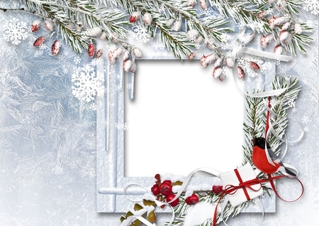 framework: Christmas background with photo frame, bullfinch, snow branches