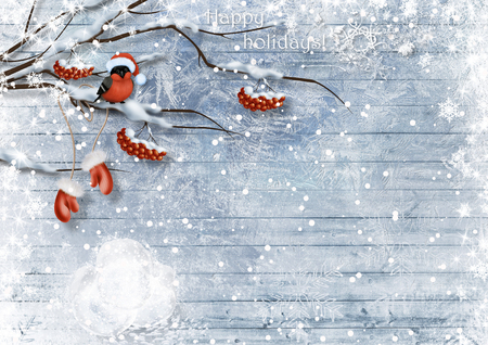 Christmas card with bullfinches and berry. Happy holidays Stock Photo