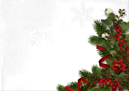 Christmas decorations with hired berries and poinsettia on a white paper