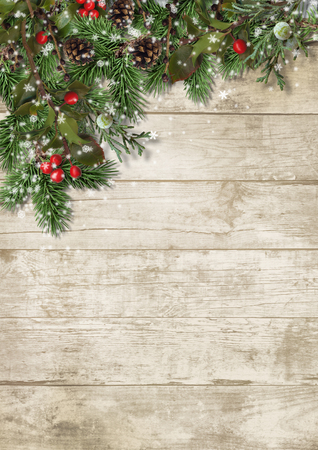 Christmas evergreen branches and holly on wood background Фото со стока