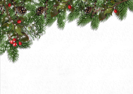 Christmas background with border of firtree and holly on white