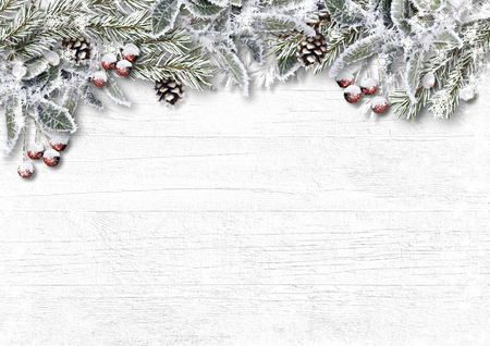 Christmas snowy firtree with holly, cone, frost on wooden board