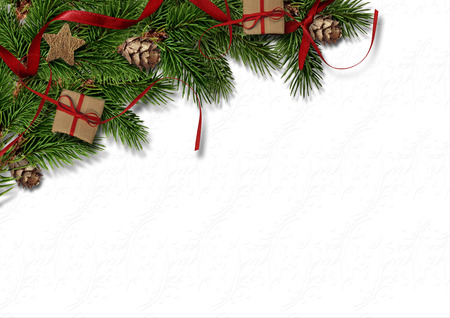 Christmas firtree with cone on white background texture