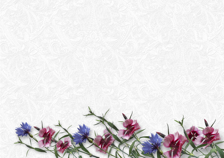 Beauty flowers on white background. greeting card with spa