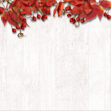 Berry over wooden background
