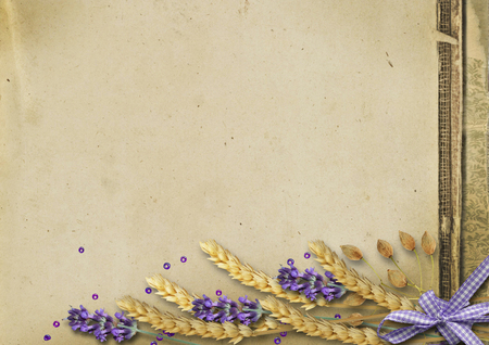 Harvest of wheat spikelets and lavender on vintage background