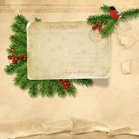 Christmas background with holly, vintage card, bullfinch