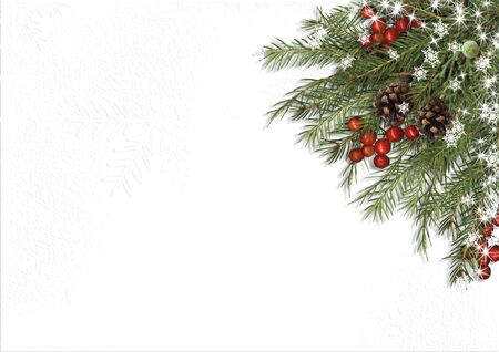 Christmas tree branch, decorations with holly on white background