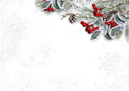 Christmas white background with beautiful fir tree border and red berries Imagens