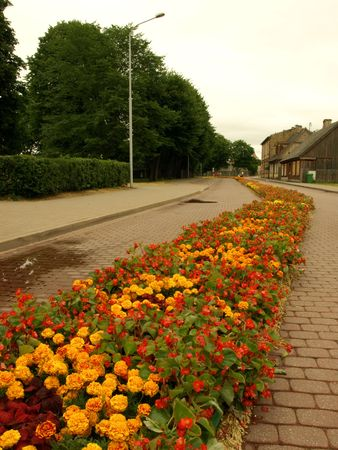 world record: Ventspils, Latvia - July 24, 2010 - longest carpet of flowers, Guinness World Record. Editorial